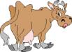 Uhrzeit mit der Kuh