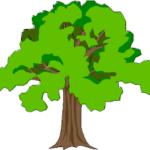 Bäume planzen